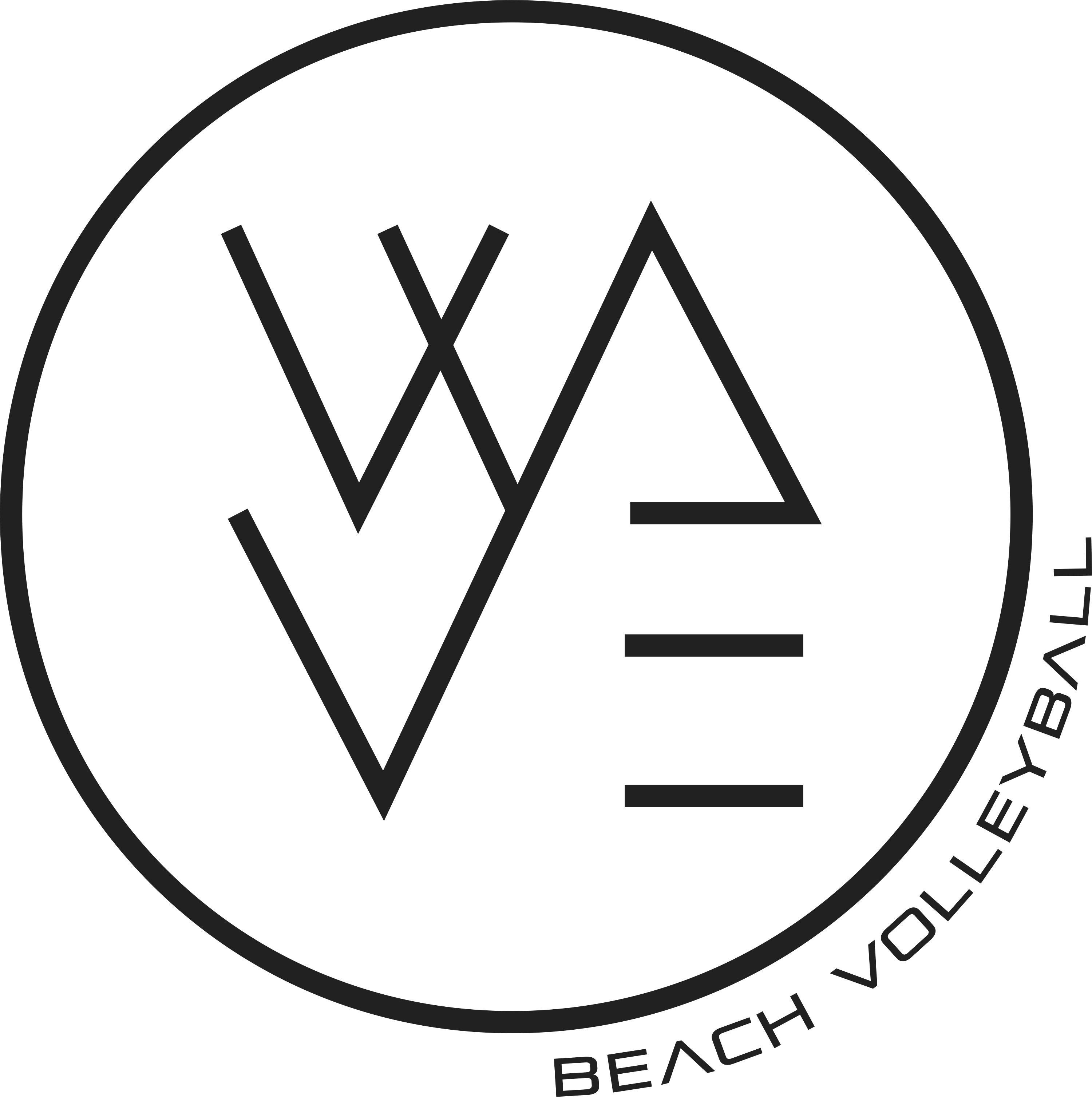 WAVE BEACH VOLLEYBALL